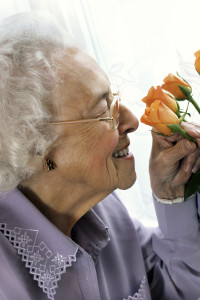 assisted living is the best option for your loved one