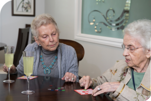 healthy senior lifestyle services